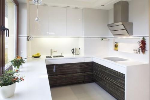 Дизайн кухни в пластике фото