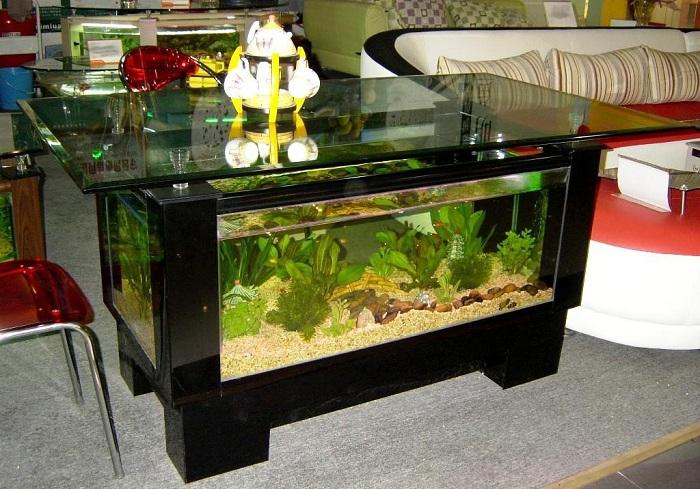 Как вписать аквариум в интерьере