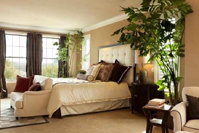 Комнатные цветы в интерьере спальни фото