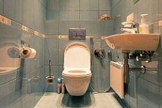 Дизайн туалета маленького размера фото примеров